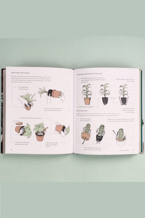 Living with Plants: A Guide to Indoor Gardening  By Sophie Lee