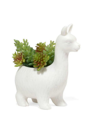 Kikkerland Lloyd the Llama Ceramic Planter