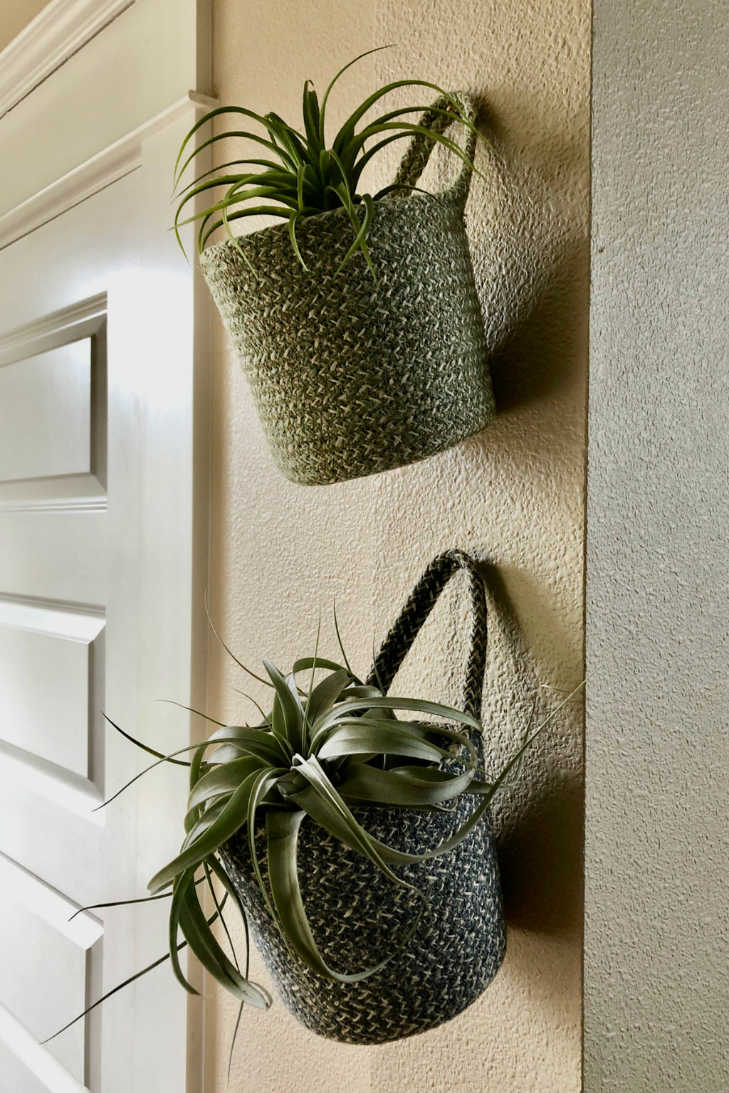 Texture by Design Ideas Melia Hanging Basket