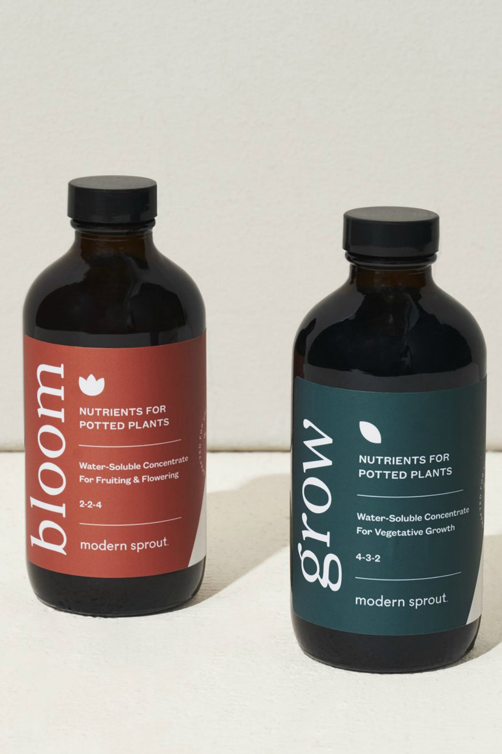 Modern Sprout Plant Nutrient in Grow