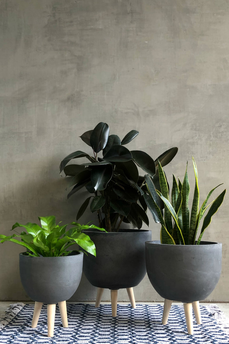 UMA Home Decor Charcoal Fiber Clay Round Planter w/Wood Legs