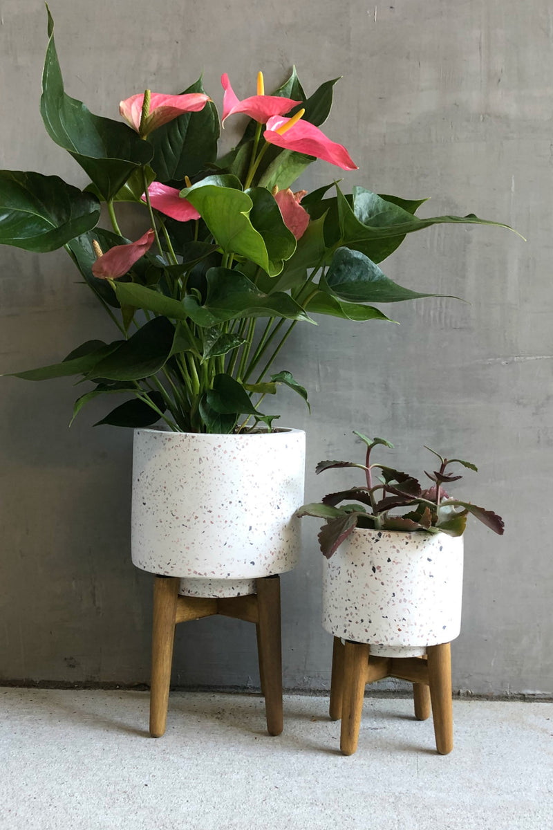 Texture by Design Ideas Terrazzo Planter with Wood Legs