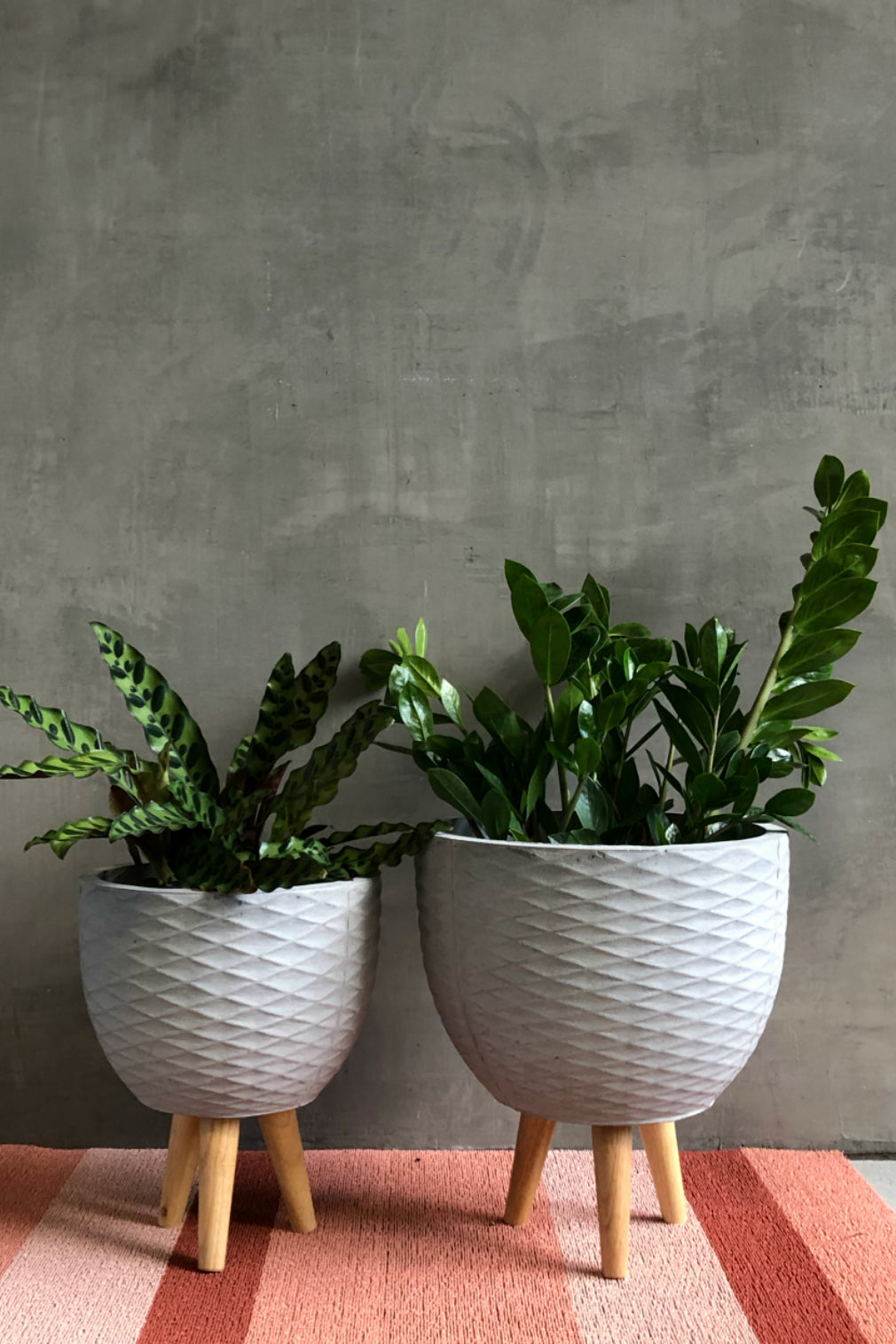 Cement Geo Round Fiber Clay Planter