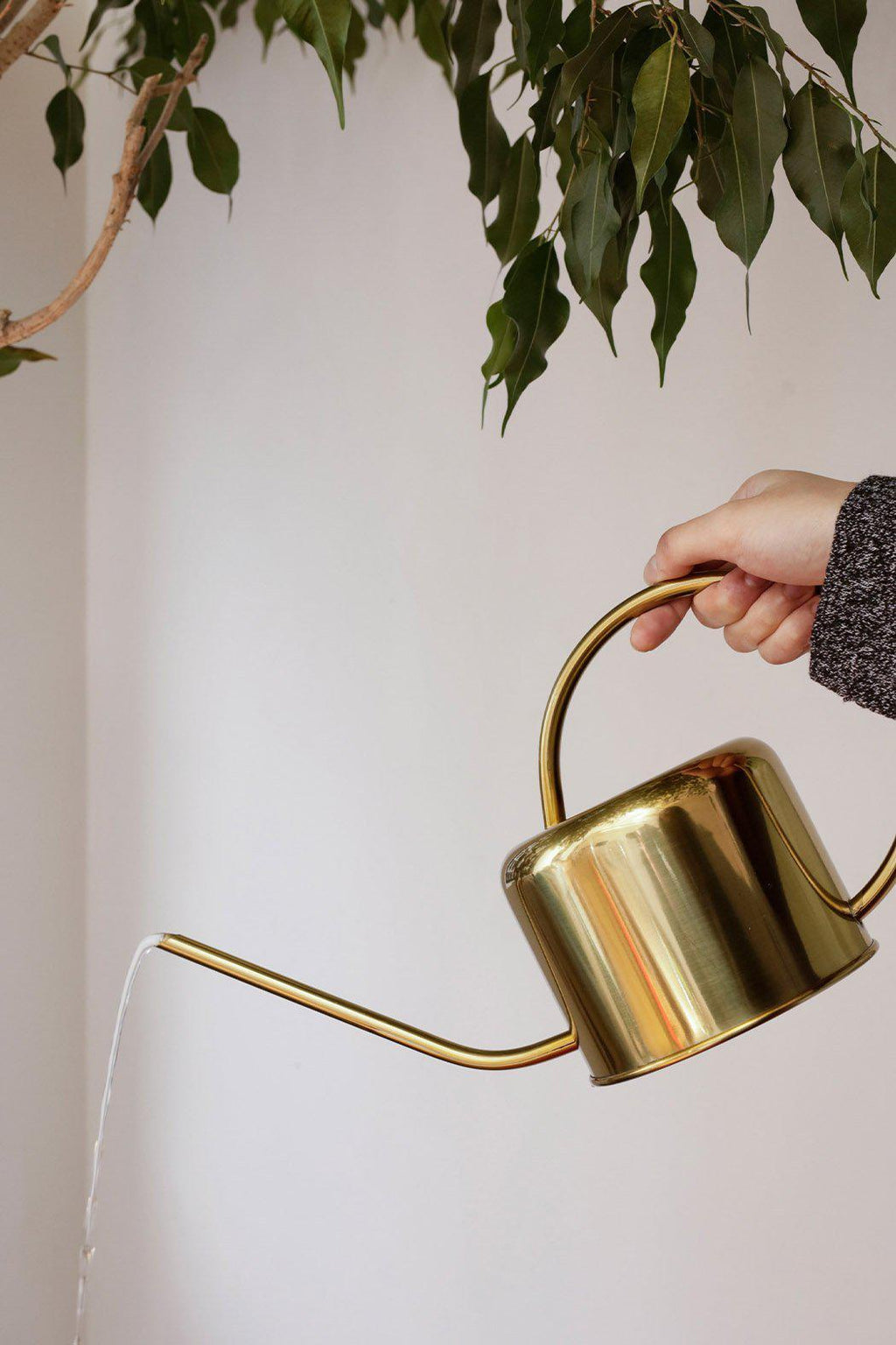 EcoVibe Style - Vintage Watering Can Gold