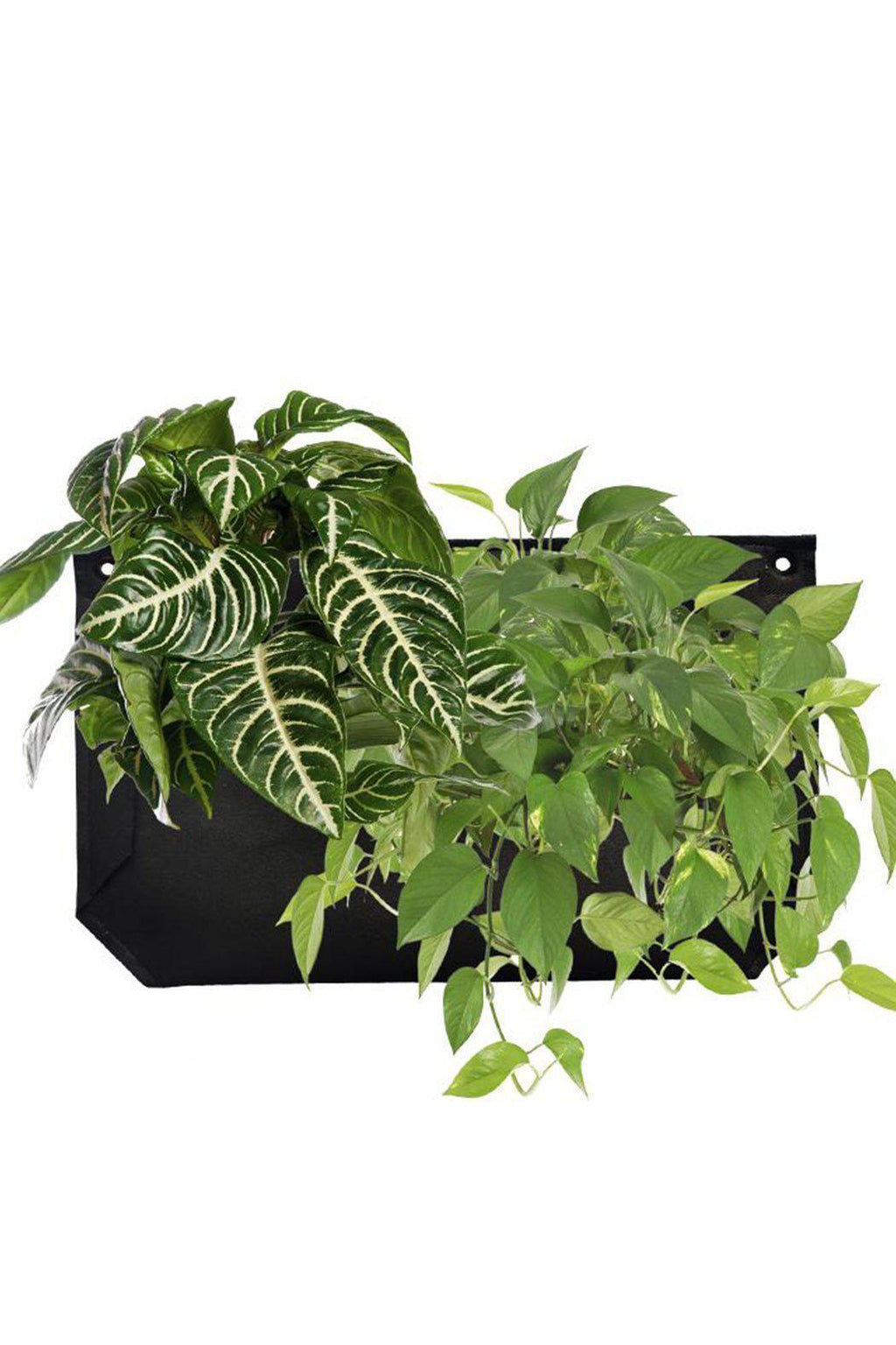 EcoVibe Style - Wally Pro Planter Pocket,