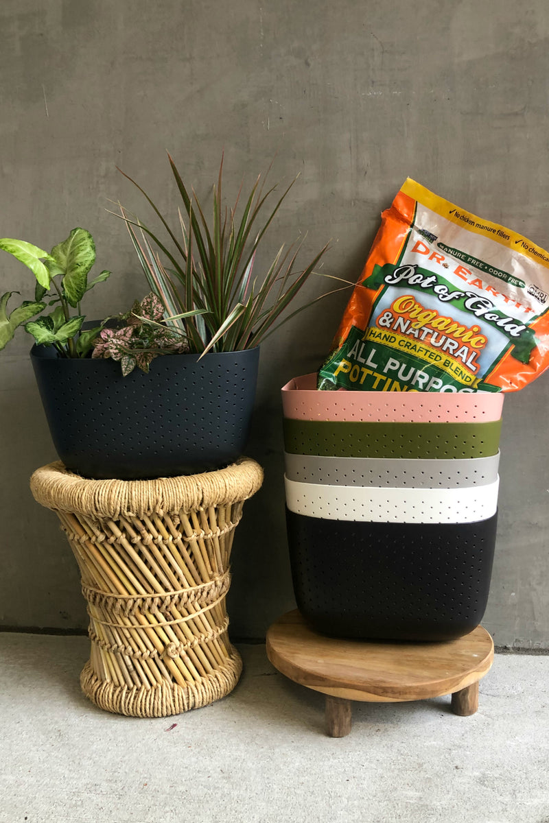 WallyGro Wall Planting Kit