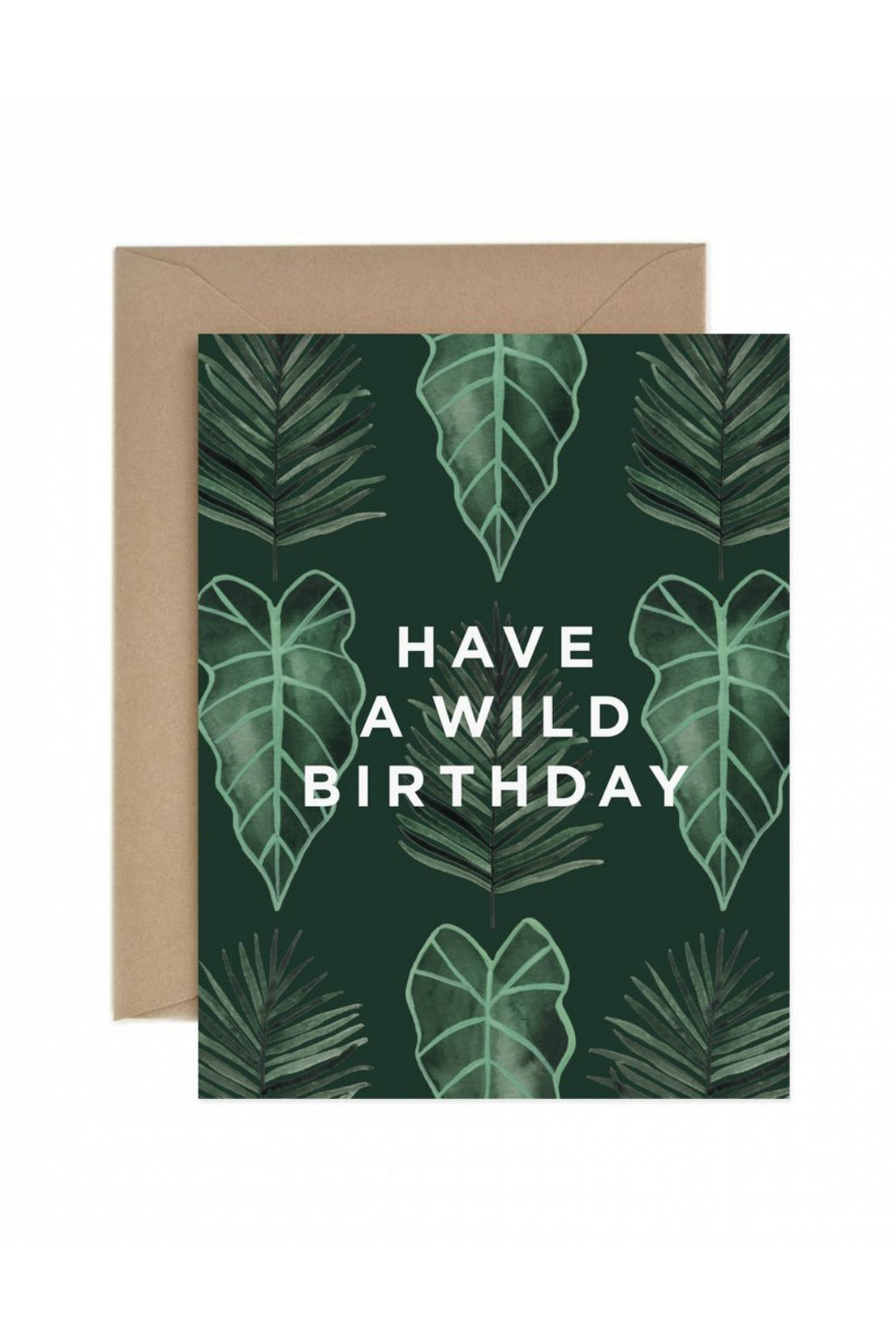 Paper Anchor Co. Have A Wild Birthday Greeting Card