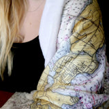 Paris Vintage Birdseye Map Blanket