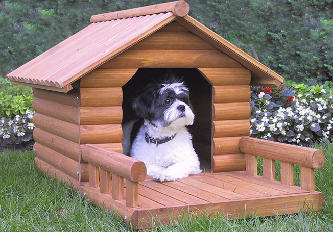 Spoiled or Practical?-Selecting the Best Dog House