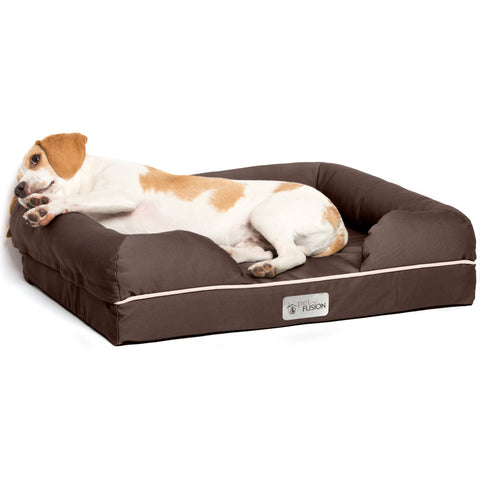 PetFusion Ultimate Pet Bed & Lounge Prem Edition in Solid Memory Foam - PetFusion