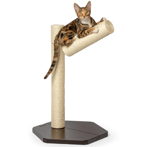 PetFusion Branch-Out Cat Scratching Post - PetFusion