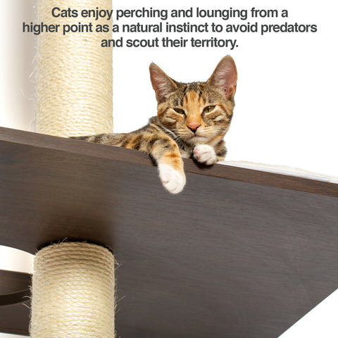 PetFusion Ultimate Cat Climber & Activity Tree - PetFusion