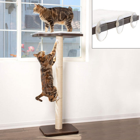 "PetFusion Ultimate Cat Window Climbing Perch 45"" Tall (Tree Sisal Scratching Posts, Modern Design Simply Suctions to Window. (Easy to Assemble) 1 Year Warranty for Manufacturer Defects - PetFusion"