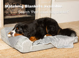 PetFusion BetterLounge in Solid Memory Foam - PetFusion