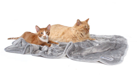 PetFusion Premium Plus Quilted Dog or Cat Blanket.  Light Inner Fill