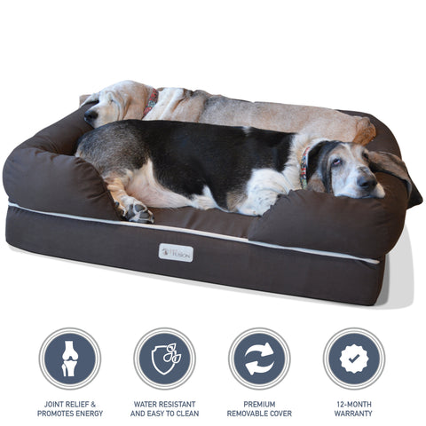 Pamper your dog with a memory foam dog bed this National Pet Month