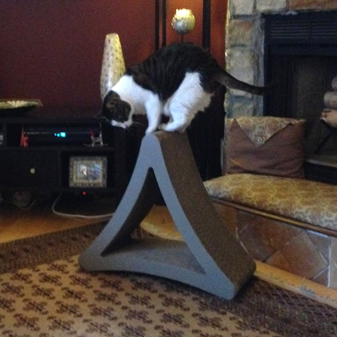 Your cat will love this vertical cat scratcher this National Pet Day