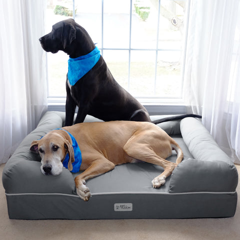 Memory foam dog beds are a great way to get dogs to sleep in their own bed