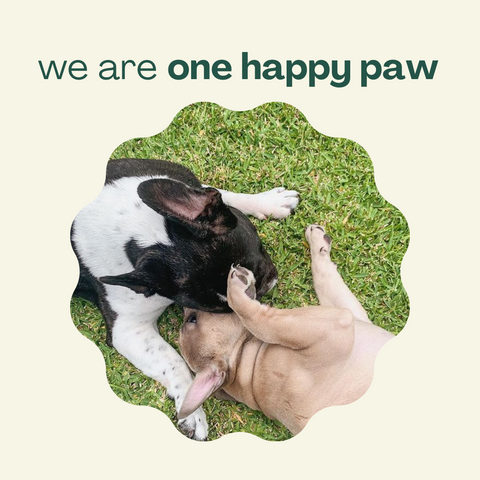 onehappypaw_about