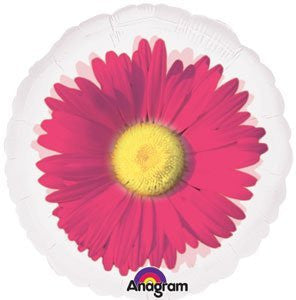 MagiColor Transparent Pink Daisy - 18""