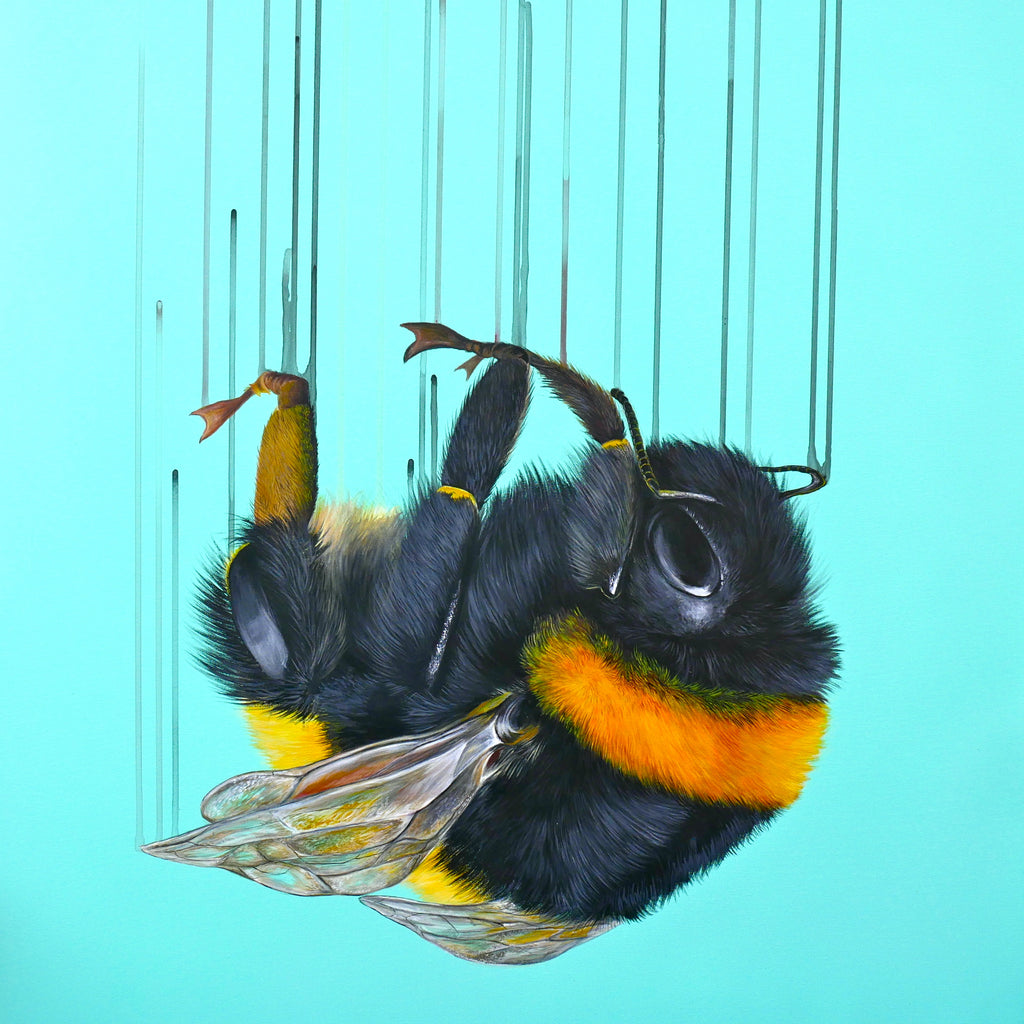 Falling for you - Louise McNaught