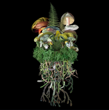 Load image into Gallery viewer, Botanicals: Spring Troupe - Jana Nicole