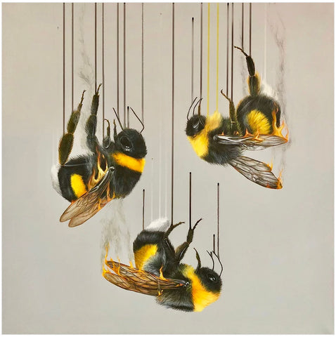Ashes, Ashes, We All Fall Down - Louise McNaught