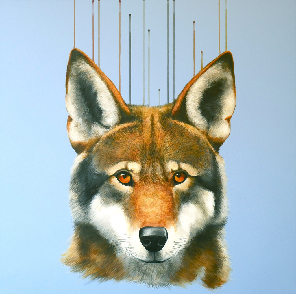 In the Red - Louise McNaught