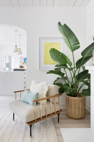 Green home decor helps you relaxing 002