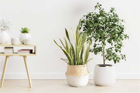 Natural materials give sustainability to your home and your life