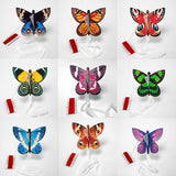 vendor STOCK 150 mixed butterflies