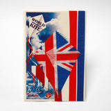 kite flag united kingdom in bag