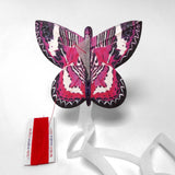 Kite butterfly pink lacewing