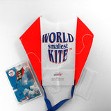 Sled Kite with WsK logo