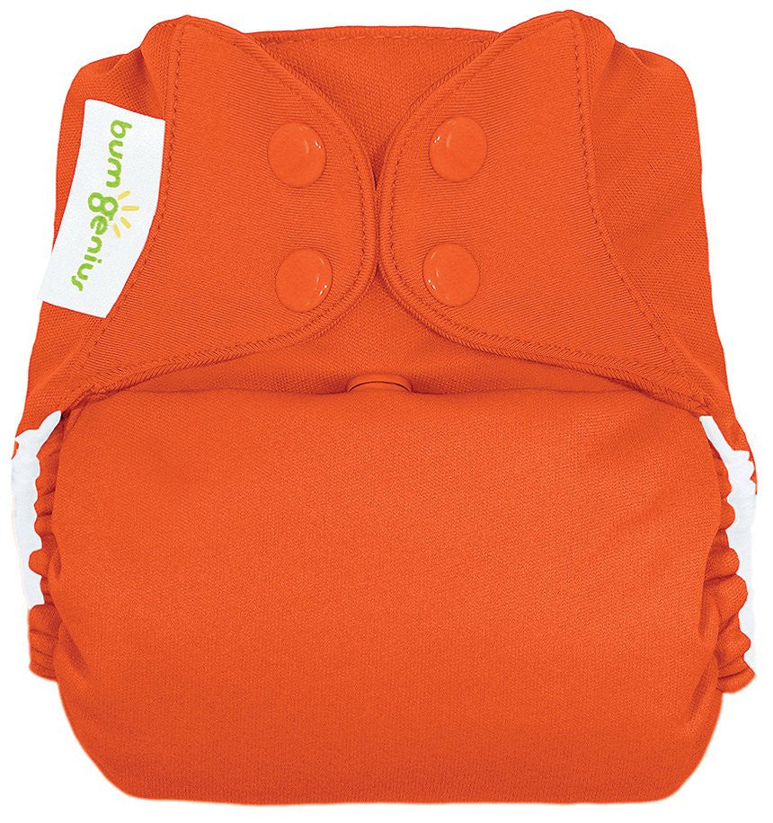 Bum Genius Elemental - Snap - All in One Cloth Diaper