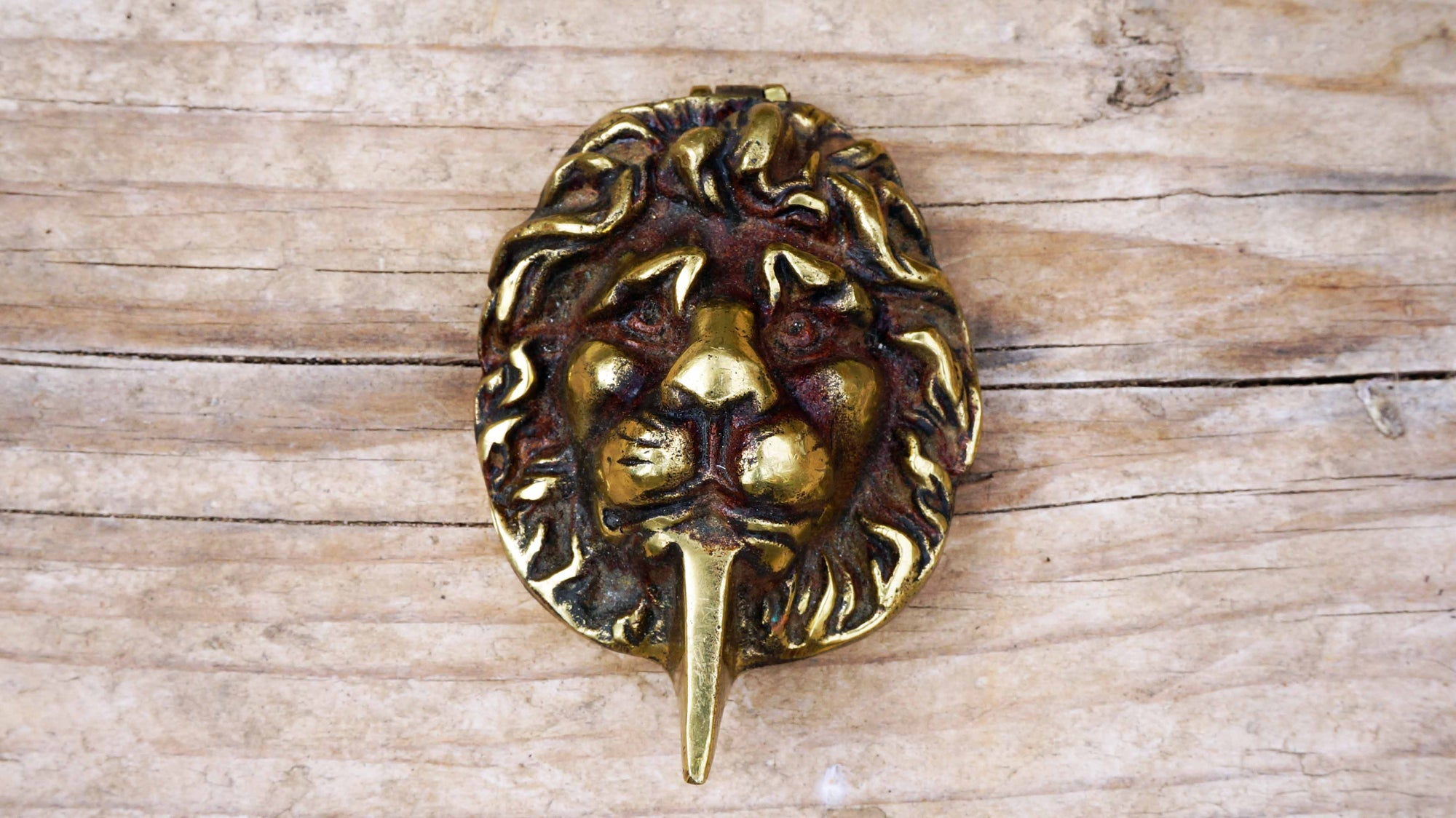 Brass Lion Escutcheon Key Cover