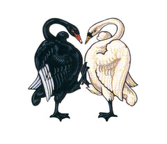 ACT Crest but the two swans are high-threeing