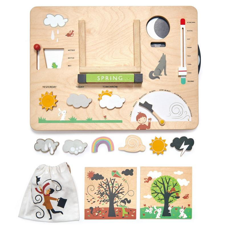 Tender Leaf Toys Weather Station