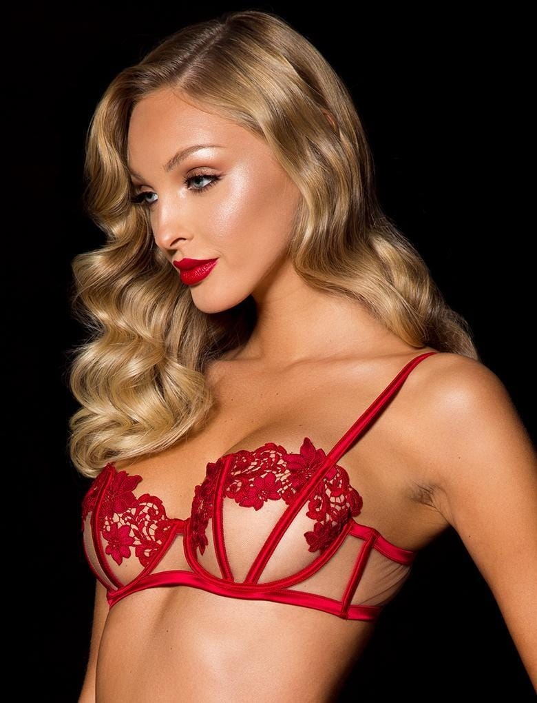 Amelie Red Lace Underwire Bra - Shop Lingerie | Honey Birdette