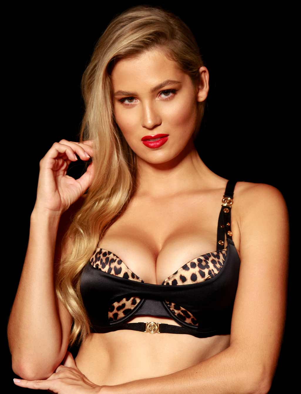 Donatella Leopard Push Up Bra | Shop  Lingerie Honey Birdette