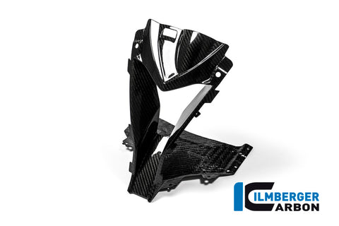 2015 -18 BMW S1000RR Carbon Air Intake Center Piece
