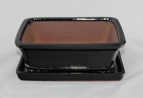 Glazed Bonsai Pot 8 inch with Humidity Tray    (G8B-11BLK)