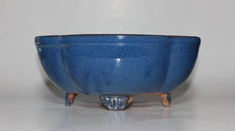 Glazed Bonsai Pot 8 inch     (DG8-04BL)