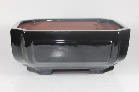 Glazed Bonsai Pot 8 inch     (DG8-04BK)