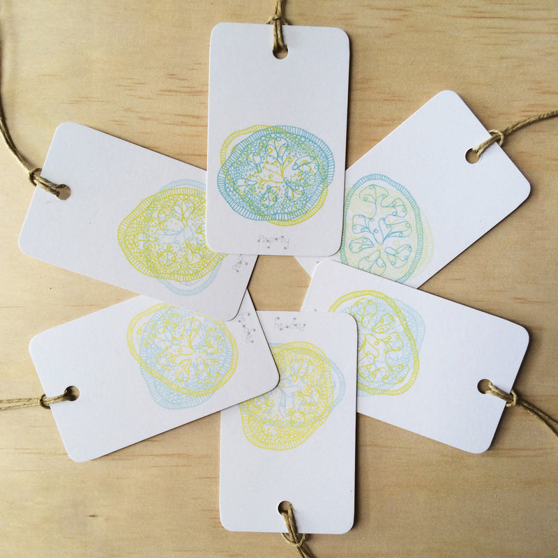 Feijoa 6 Gift Tags