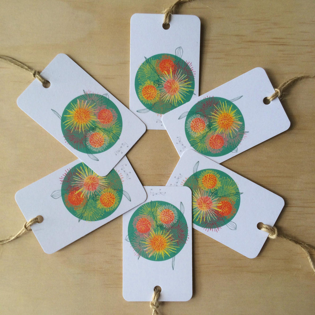 Hakea Fireworks 6 Gift Tags