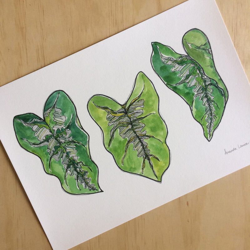 Leafy Greens Nature Print A4