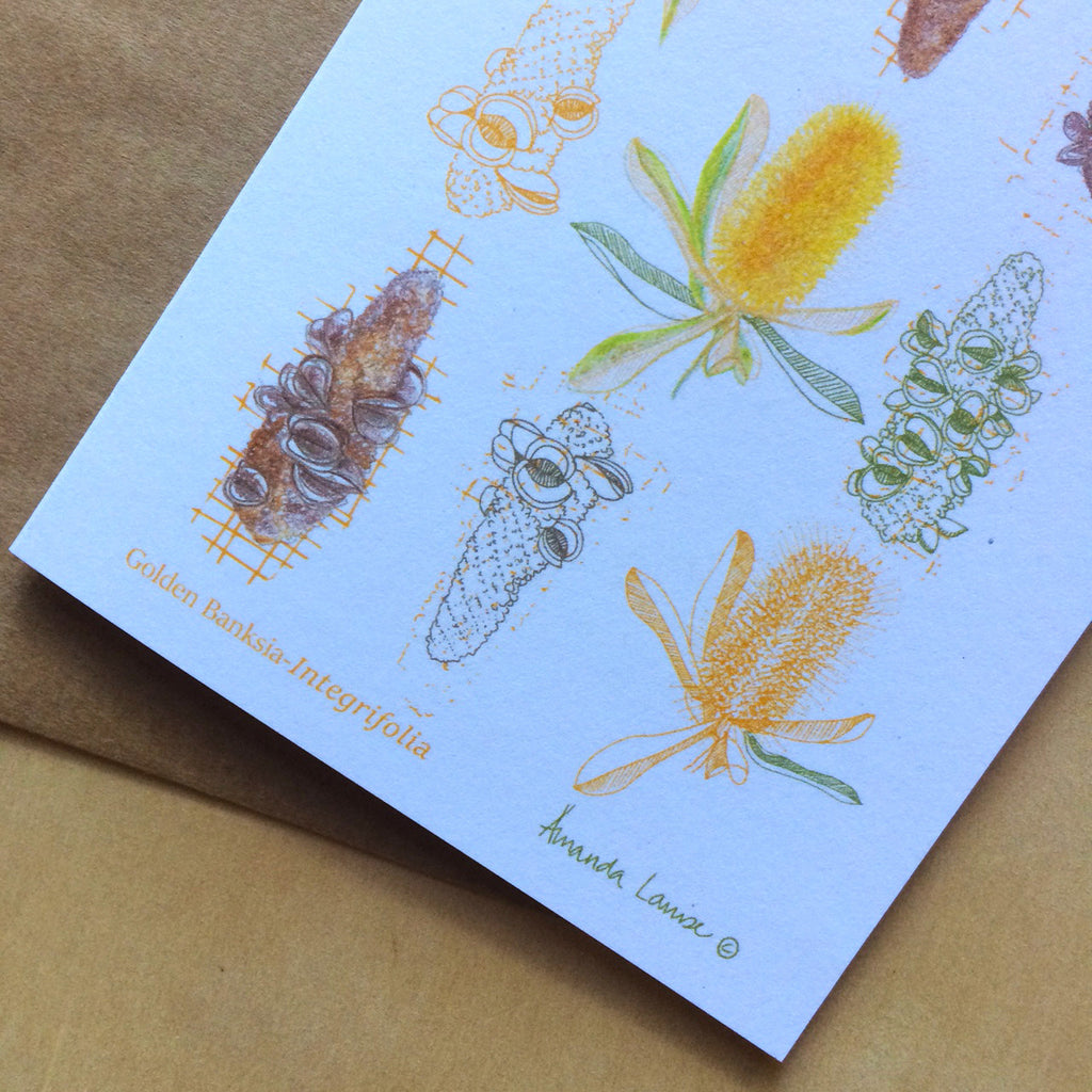 Golden Banksia Greeting Card