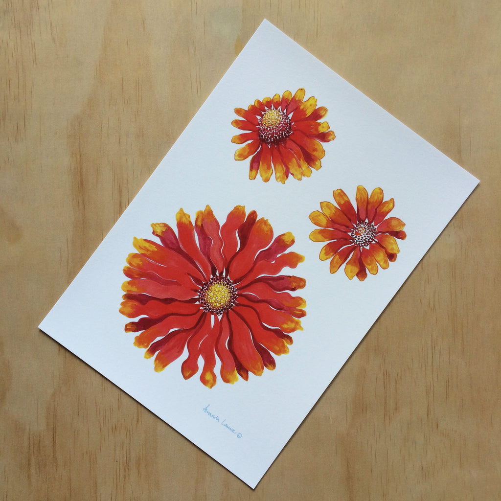 Blanket Flower Nature Print A4