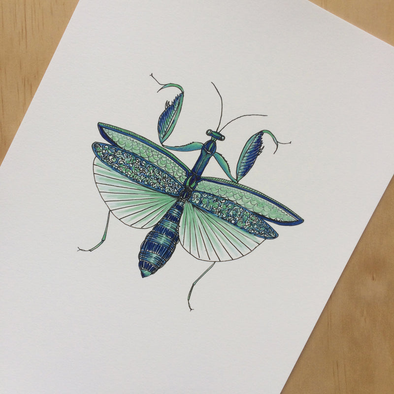 Mantis Nature Print A4
